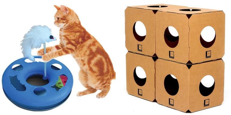 Brinquedos perfeitos para gatos e cachorros se distraírem
